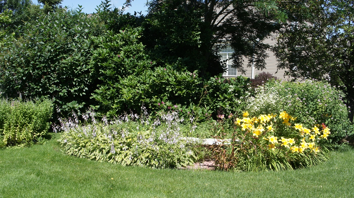 Hostas, daylilies and monarda
