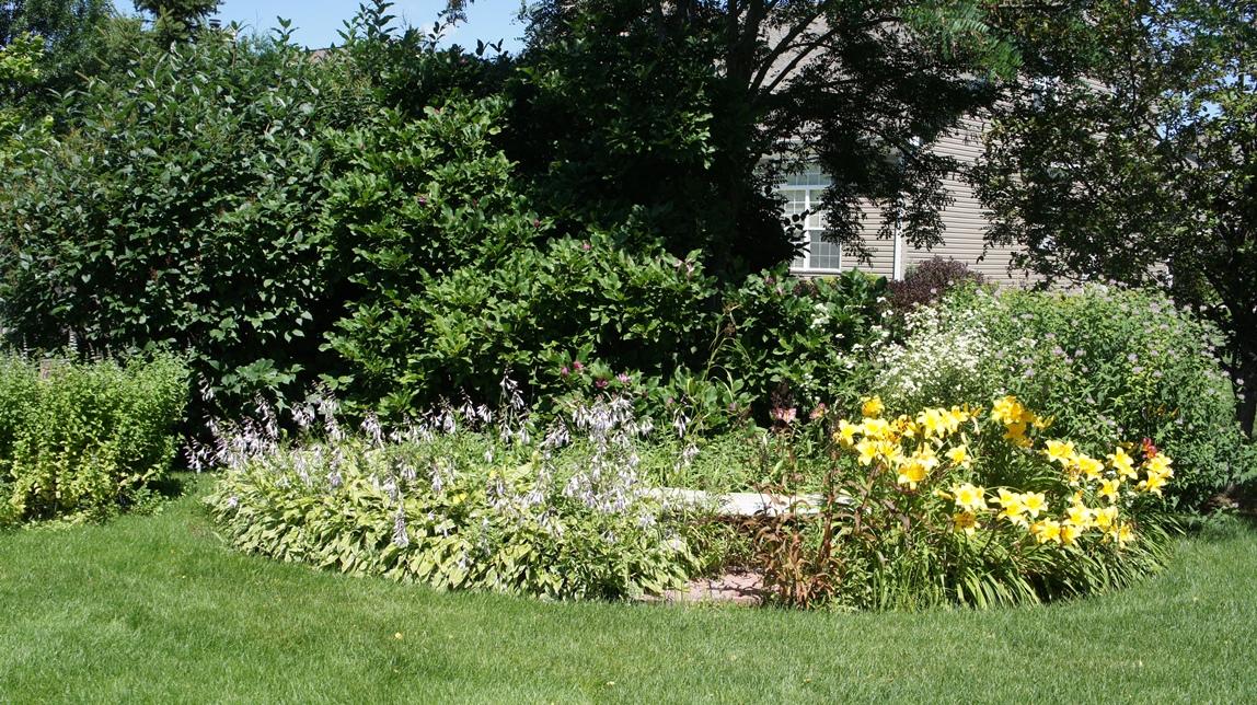 Hostas, daylilies and monarda